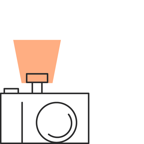 icon of camera with the flash on