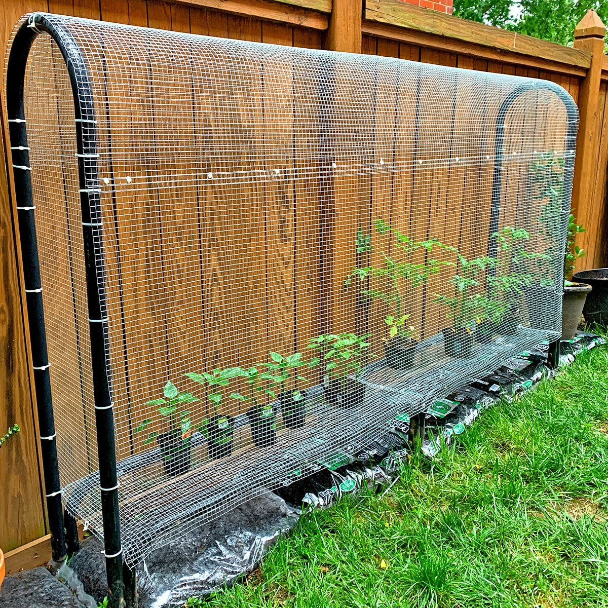 DIY Fenced-in Planter